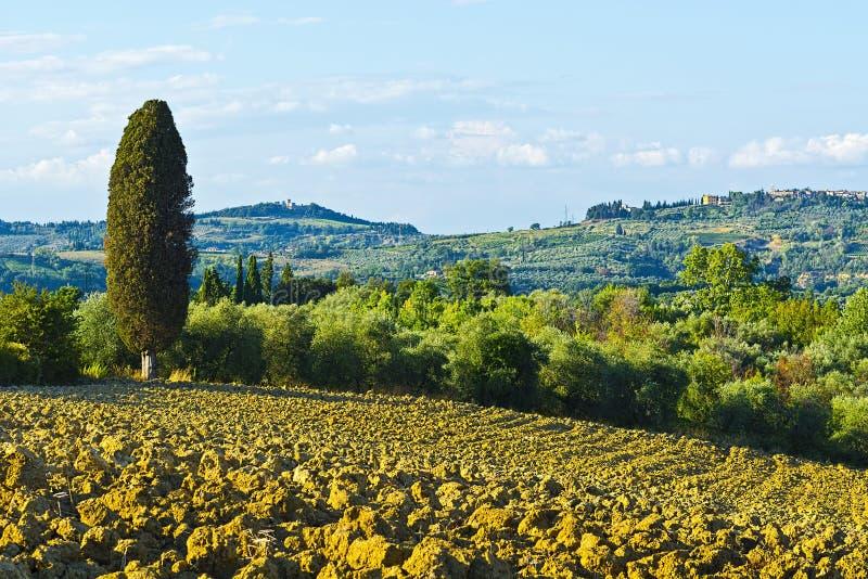 Collines labourées de la Toscane photos libres de droits
