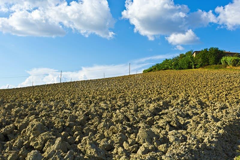Collines labourées de la Toscane images stock
