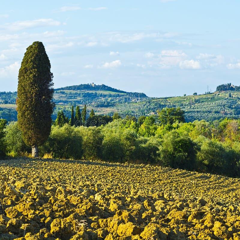 Collines labourées de la Toscane photos stock