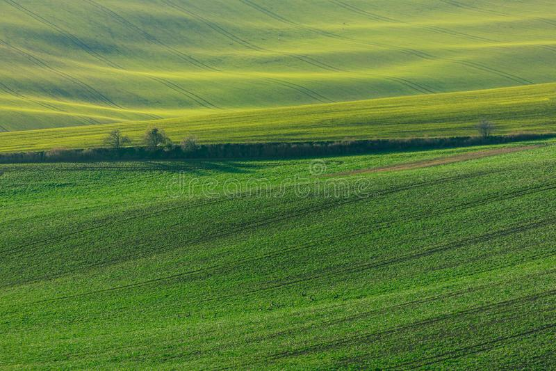 Collines vertes de la Moravie photos libres de droits