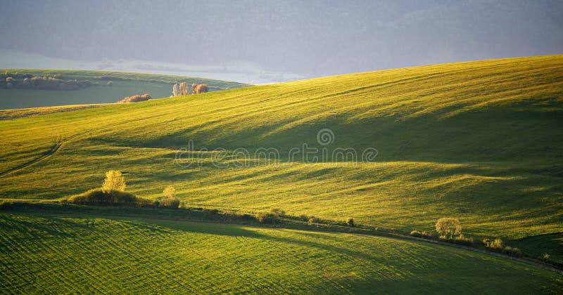Collines vertes de ressort de la Slovaquie Campagne ensoleillée de mai photographie stock