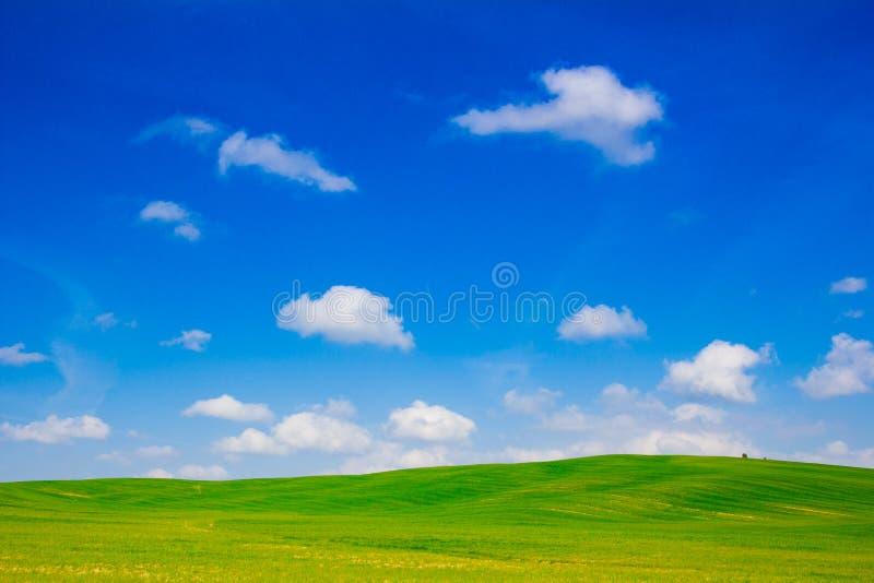 Collines vertes et ciel bleu en d'Orcia de Val, Toscane image stock