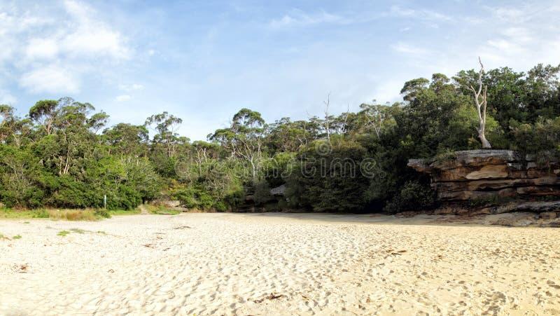 Collins Beach vårliten vik fotografering för bildbyråer