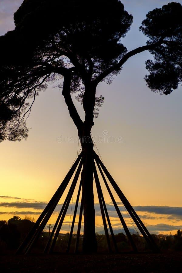 Free Collserola Park In Barcelona, Spain Stock Image - 78379071