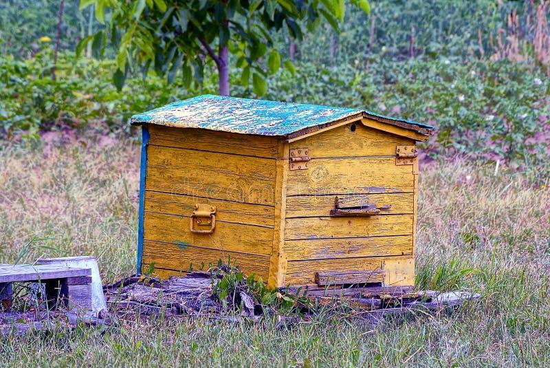 Colmeia de madeira velha amarela em um apiário na grama fotografia de stock royalty free