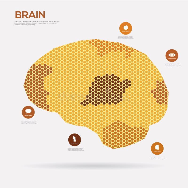 Colmeia do cérebro do hexágono Infographics ilustração royalty free