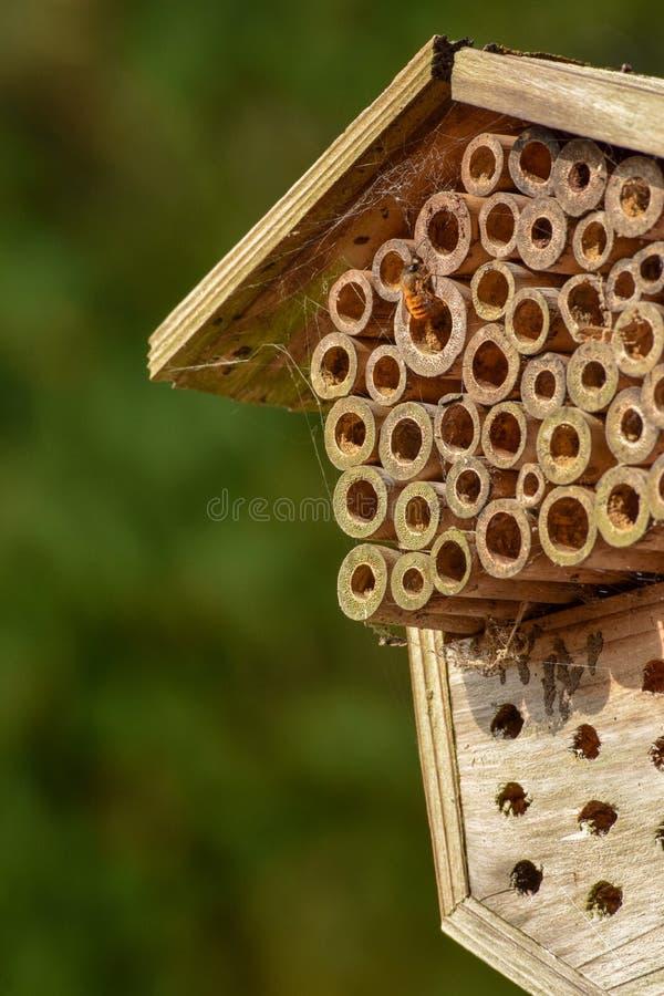 Colmena de bambú hecha a mano con la abeja inmóvil imagen de archivo