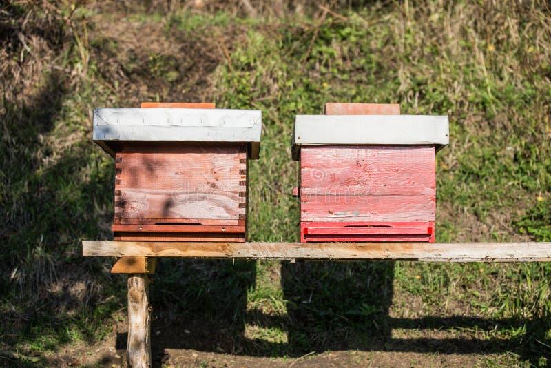 Colmena de madera para las abejas, apicultura, miel, salud, vida sana fotos de archivo libres de regalías