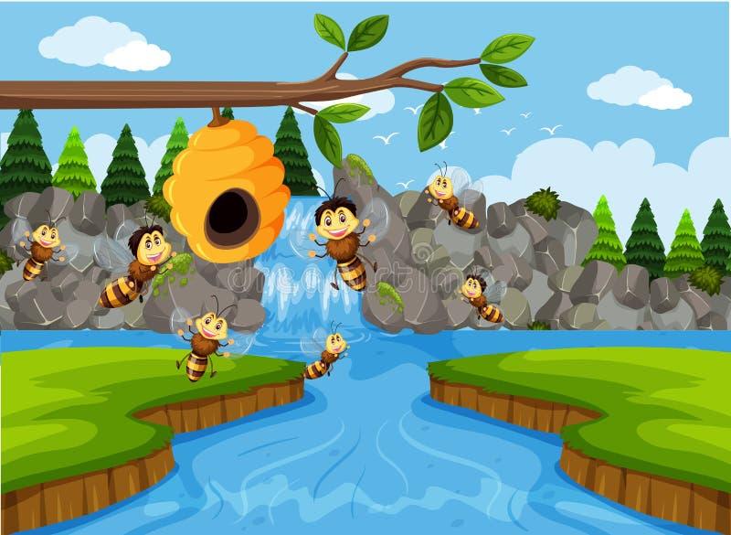 Colmena en escena de la cascada libre illustration