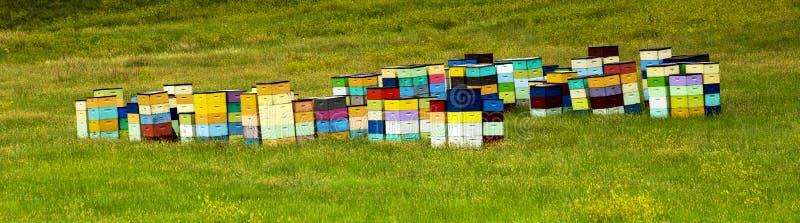 Colmenas coloridas de la colina del balanceo de Dakota del Sur, cerca de Cust foto de archivo libre de regalías