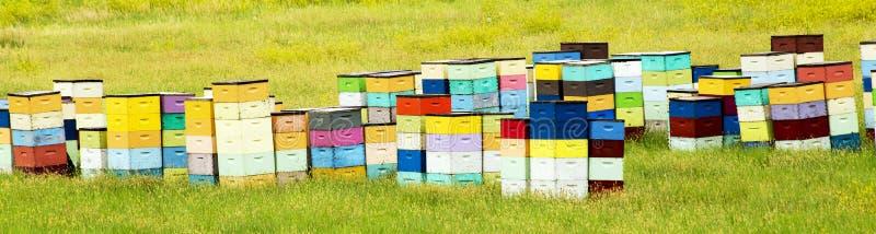Colmenas coloridas de la colina del balanceo de Dakota del Sur, cerca de Cust imagen de archivo