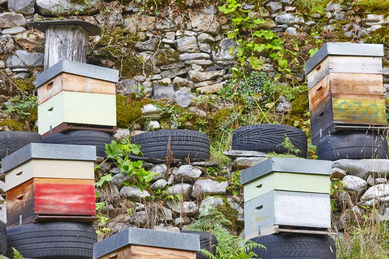 colmenas Tradicional coloreó los inMuniellos de la caja de madera, Asturias, España imagenes de archivo