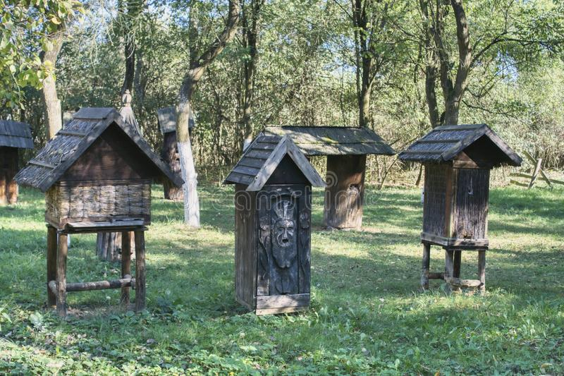 Colmenas viejas en una huerta vieja con los árboles grandes foto de archivo libre de regalías