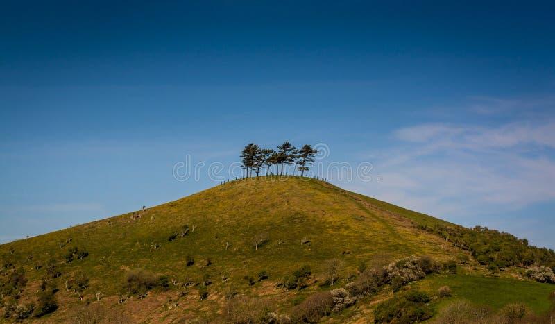 Colmer的小山在多西特,英国 库存图片