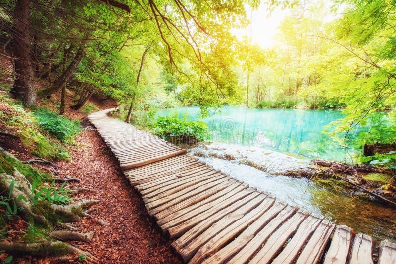Colocação de madeira na água azul Croácia dos lagos Plitvice imagem de stock royalty free