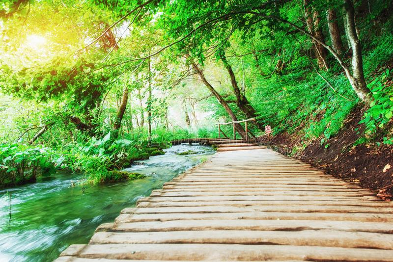Colocação de madeira na água azul Croácia dos lagos Plitvice imagens de stock royalty free