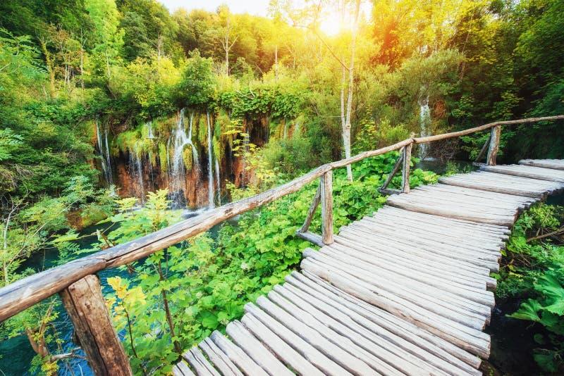 Colocação de madeira na água azul Croácia dos lagos Plitvice fotos de stock