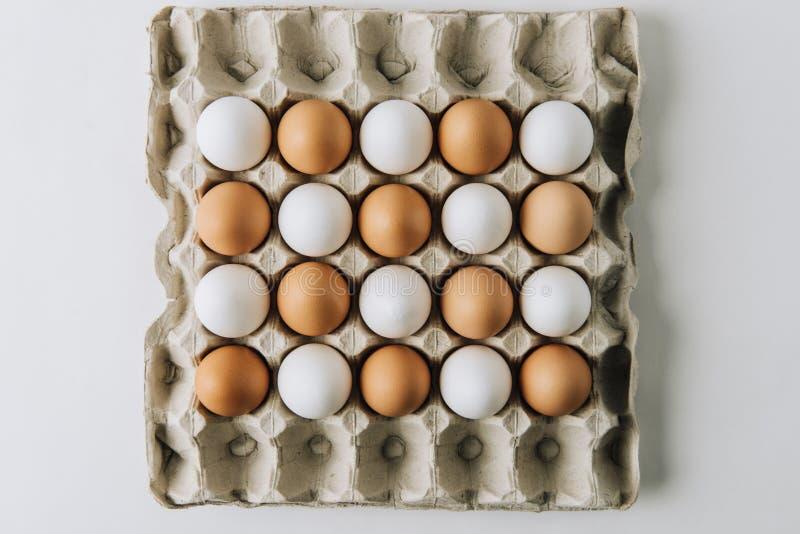 colocação de ovos brancos e marrons na caixa do ovo no fundo branco fotos de stock