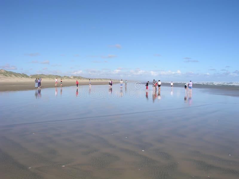 Download Colocación en la playa imagen de archivo. Imagen de asoleado - 178537