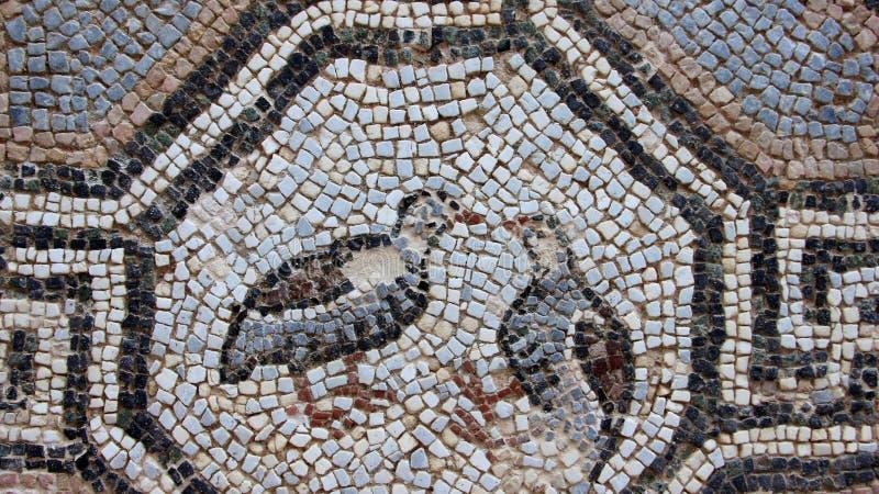 Coloful del piso de mosaico con el detalle del pájaro del amante foto de archivo libre de regalías