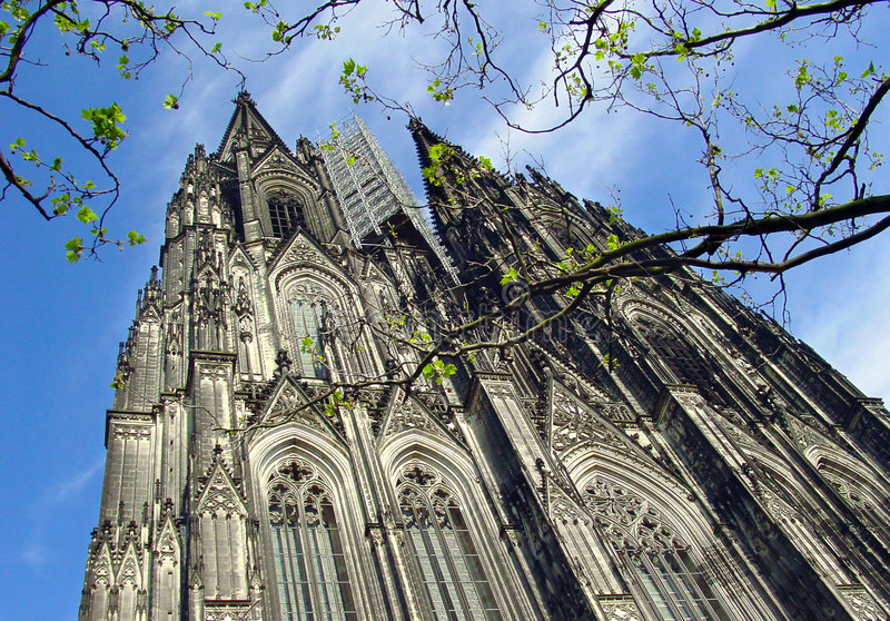 Cologne cathedral with tree branches stock photos