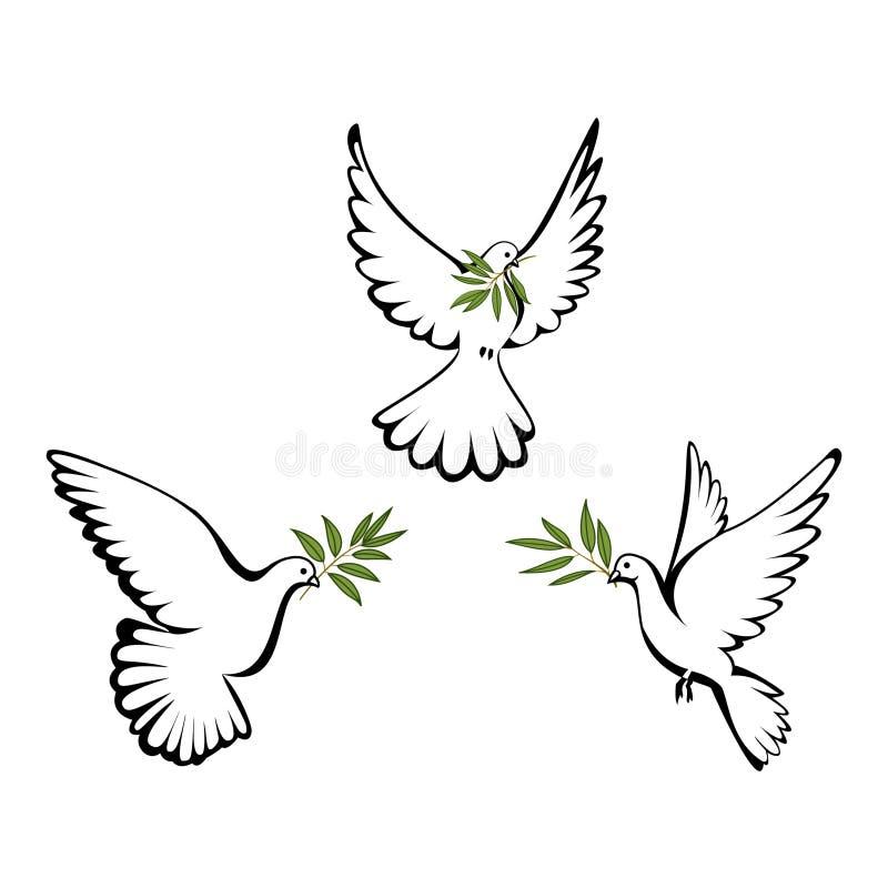 Colomba di pace illustrazione vettoriale