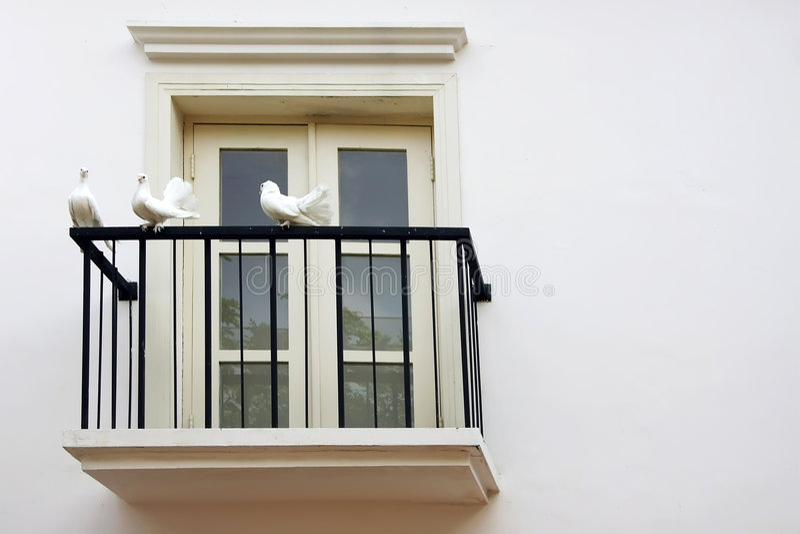 Colombe trois au balcon Windows photographie stock