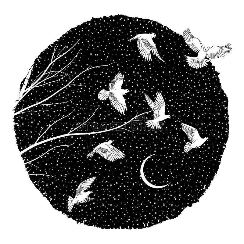 Colombes blanches la nuit illustration libre de droits