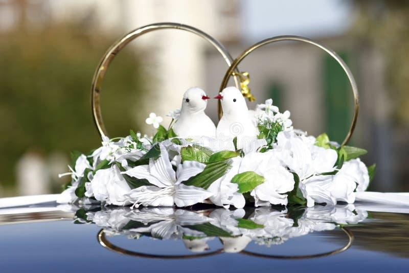 Colombes de mariage photo libre de droits