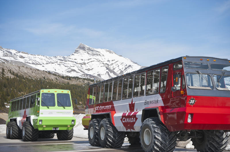 Colombia icefield, sneeuw-bus stock afbeelding