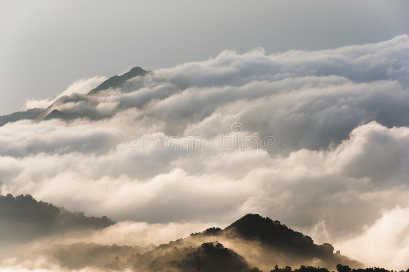 Colombia - Mountain peak in the clouds. Mountain peak in the Sierra Nevada de Santa Marta, a Big Rainforest Area in the north of colombia stock photo