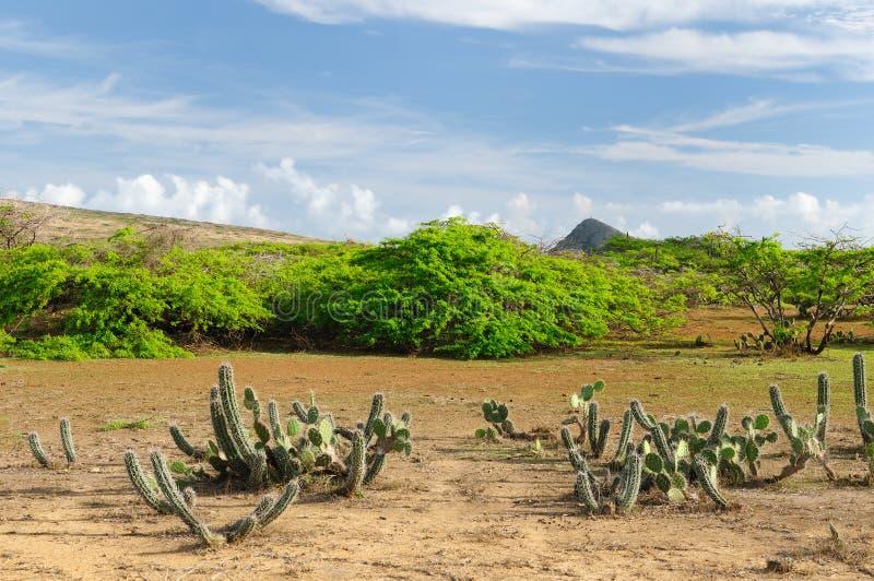 Colombia Pilon de azucar strand i La Guajira arkivbild