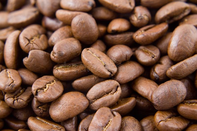 Colombian coffee beans royalty free stock photography