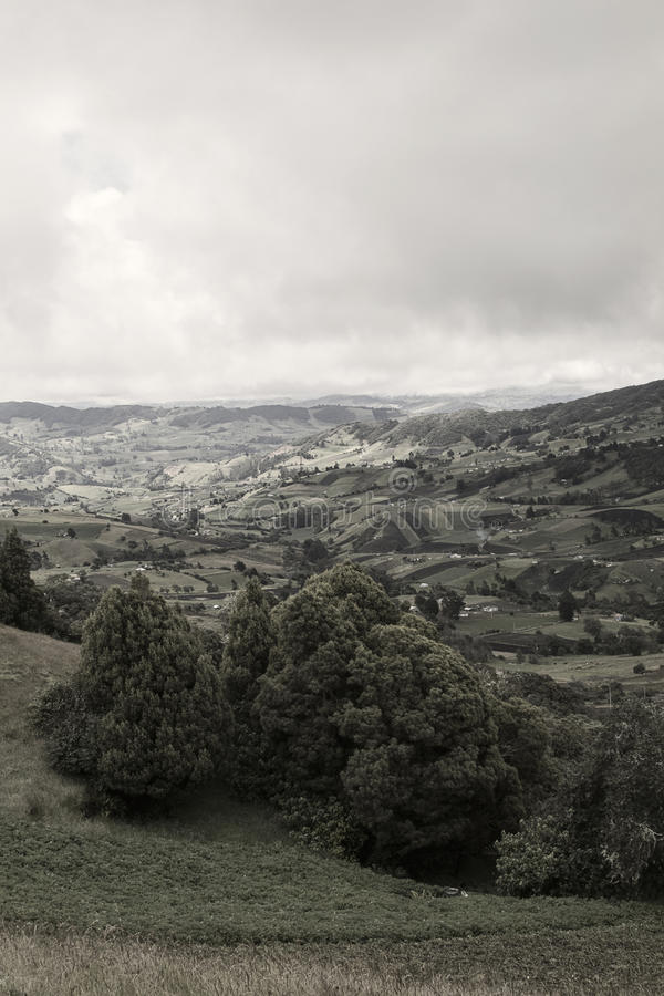 Colombianska fält fotografering för bildbyråer