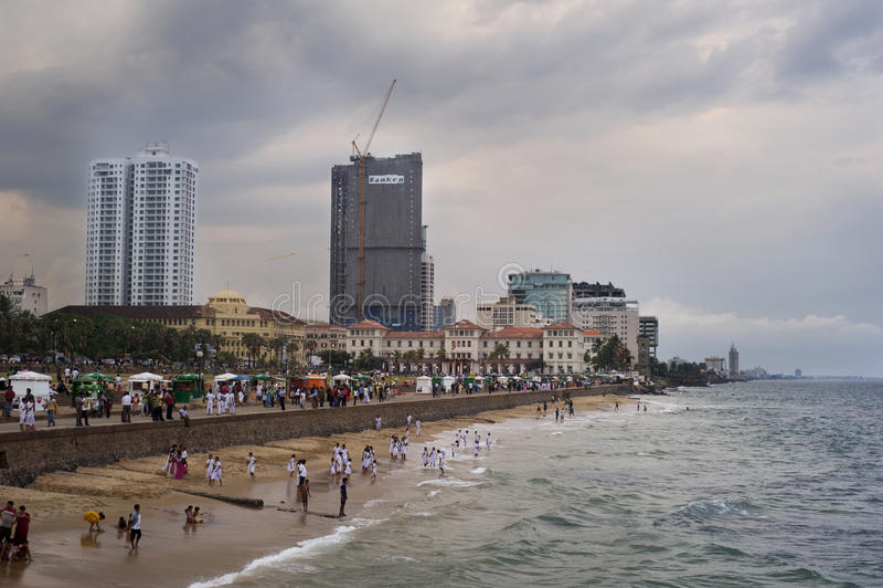 Colombo fotografia stock libera da diritti