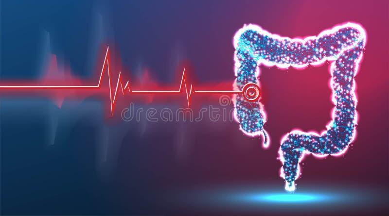 colon, darmen, spijsverteringsstelsel, Ziektepunt Gezondheid en geneeskunde chirurgische technologie, Abstract low poly wireframe royalty-vrije illustratie