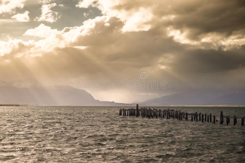 Colonia de rey Cormorant, muelle viejo, Puerto Natales, Patag antártico imagen de archivo