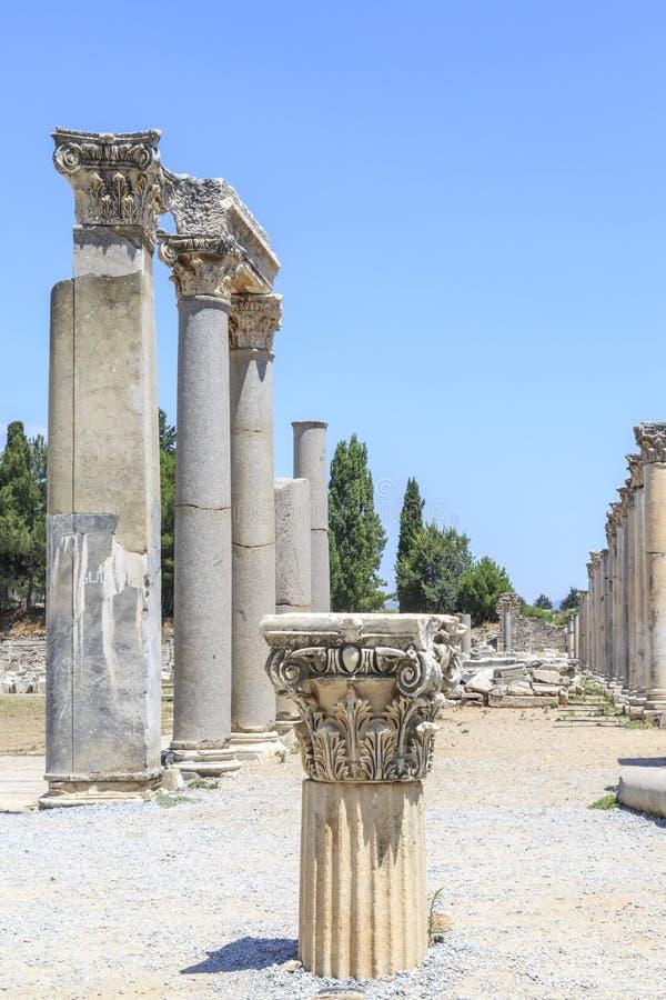 Colonna nel untere dell'agora vicino alla biblioteca di Celso in Ephesus, Smirne, Tu fotografie stock