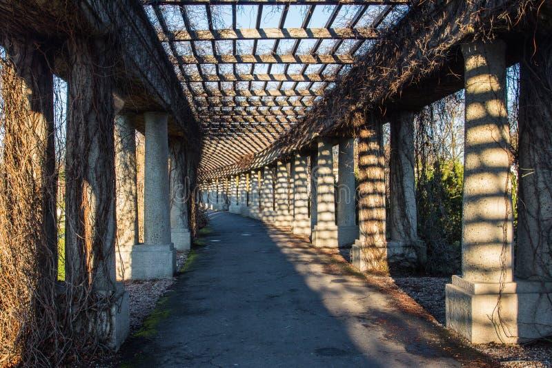 Colonnade vicino alla sala centrale di Breslavia Polonia immagine stock