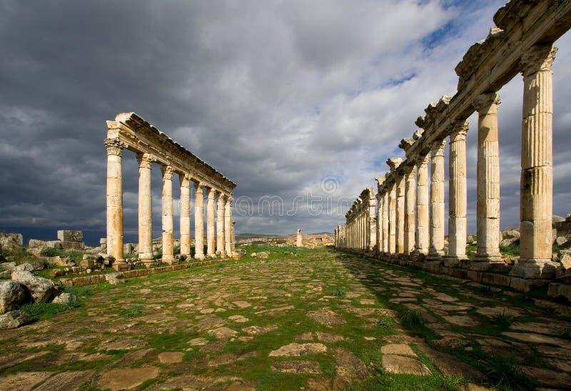 colonnaded gata för apamea fotografering för bildbyråer