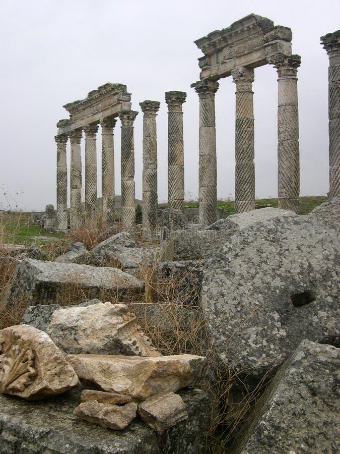 Colonnato in Apamea immagine stock