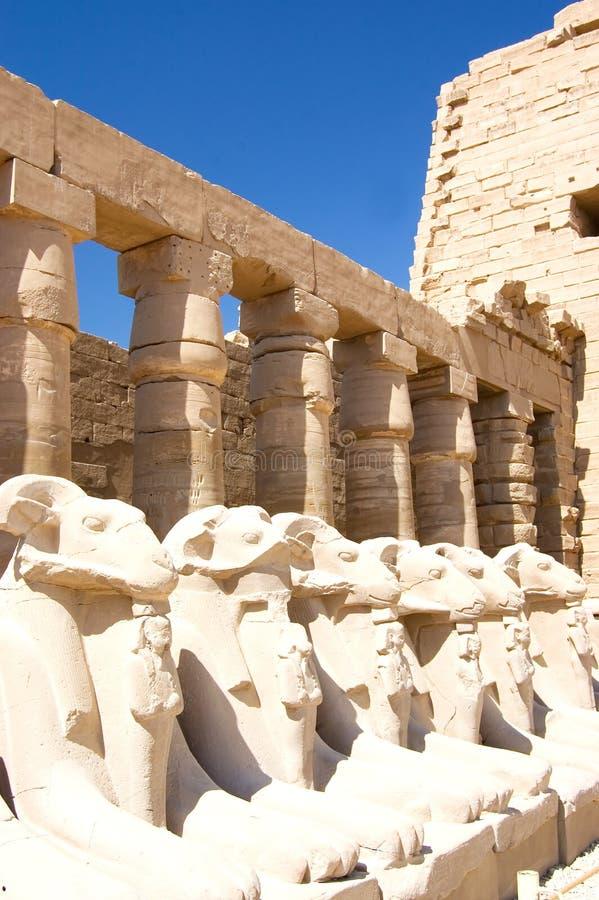 Colonne al tempiale di Karnak, Luxor, Egitto fotografia stock