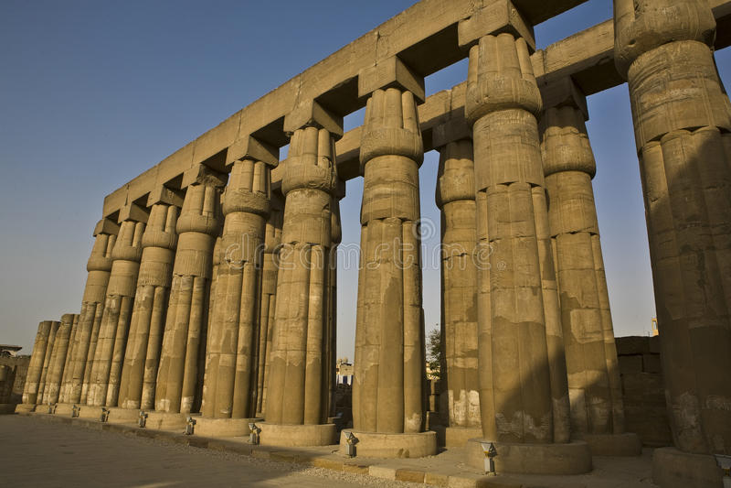 Colonne al tempio di Luxor, Egitto immagini stock libere da diritti