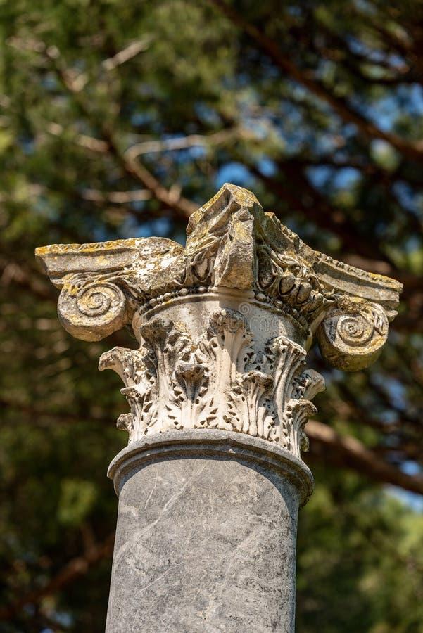 Colonne avec le capital dans le style corinthien - Ostia Antica Rome photos stock