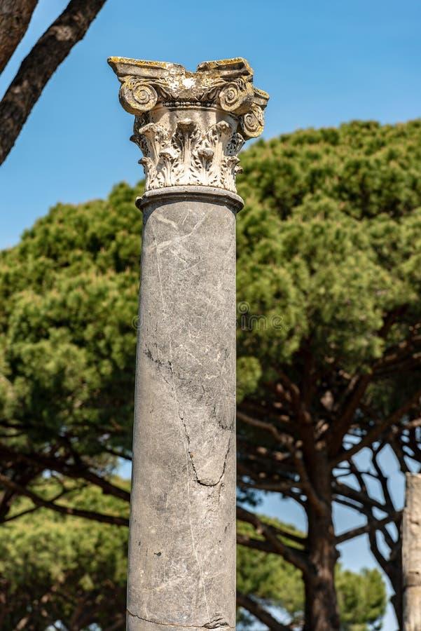 Colonne avec le capital dans le style corinthien - Ostia Antica Rome photographie stock libre de droits