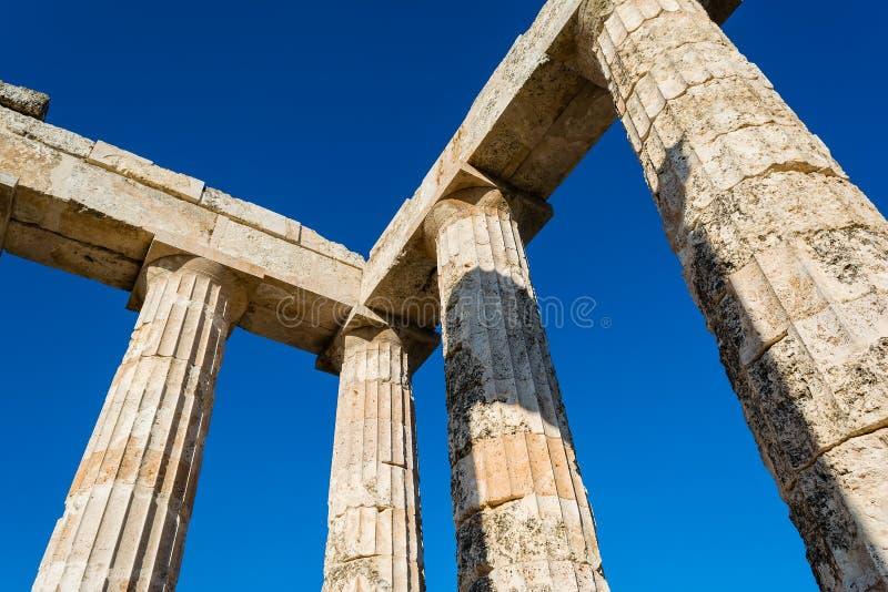 Colonne del tempio antico di Zeus immagine stock