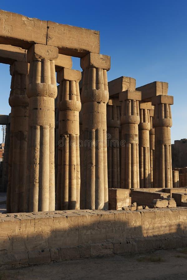 Colonne in tempio di Luxor fotografie stock libere da diritti