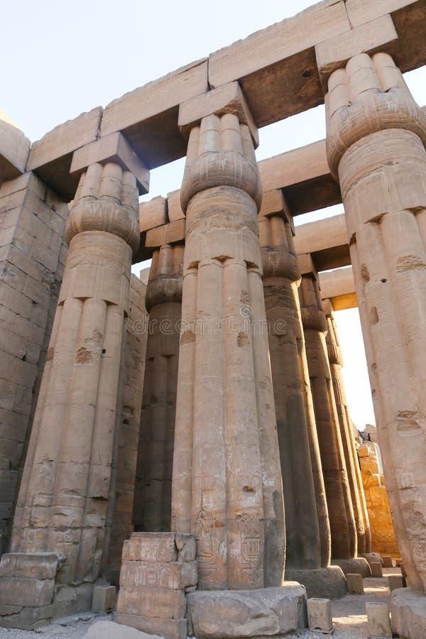 Colonnes énormes comme fleur de lotus le temple de Louxor photos libres de droits