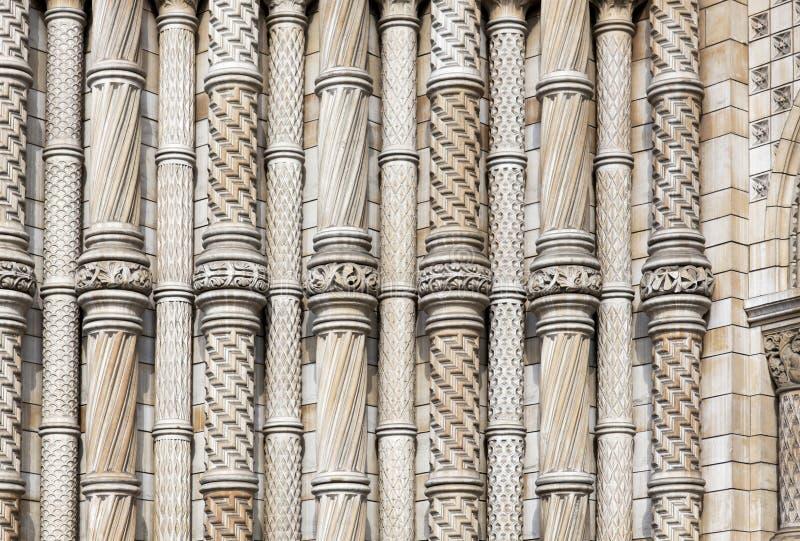 Colonnes au musée d'histoire naturelle images stock