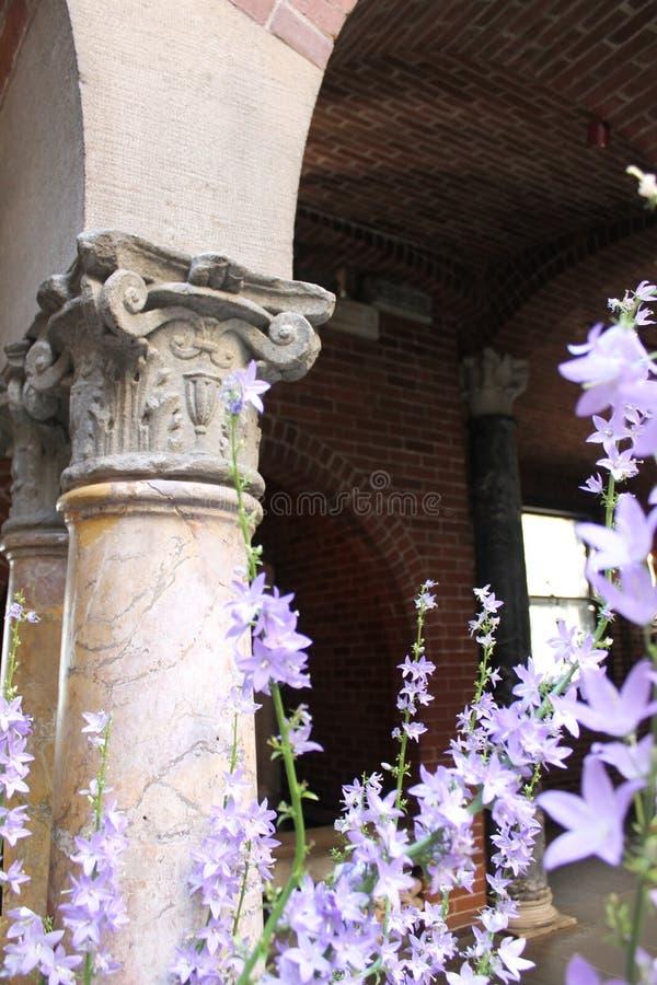 Colonnes corinthiennes avec des fleurs de lavande photo stock